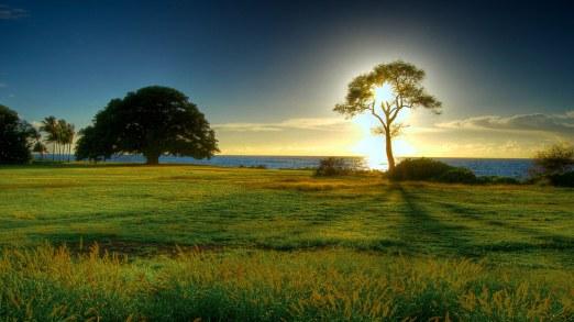 Svaki izlazak sunca je ispunjenje večne Darme... Možda propuštamo da vidimo njegovu slavu...