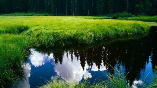 Svaka dimenzija je produžetak nas. Ako to ne shvatimo, osećaćemo se izolovano i usamljeno...