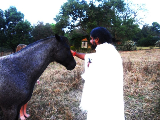 Mohanji and  a horse