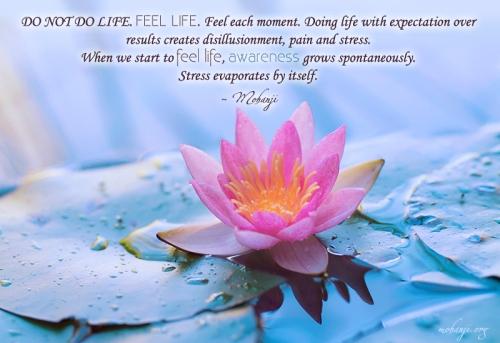 NEMOJ DA RADIŠ ŽIVOT. OSEĆAJ ŽIVOT. Osećaj svaki momenat. Raditi život sa očekivanjima rezultata stvara razočaranje, bol i stres. Kada počnemo da osećamo život, svesnost spontano raste. Stres sam po sebi izvetri.