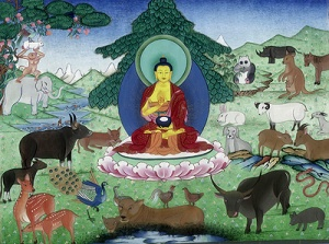 01 buddhas love for animals