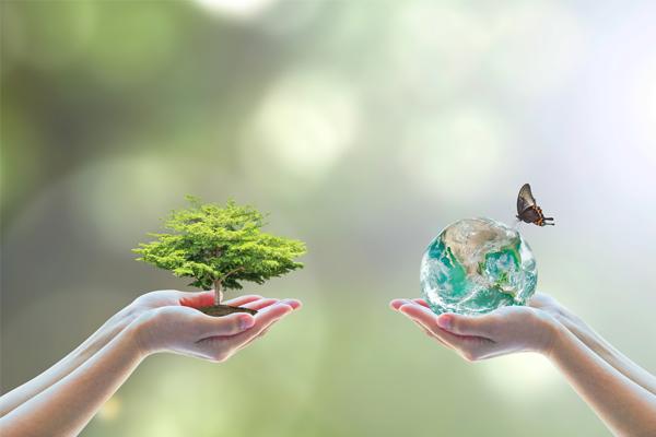 earth balance 1
