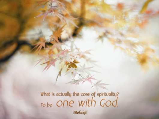mohanji-quote-what-is-actually-the-core-of-spirituality