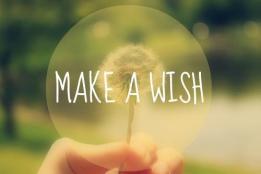 10764-make-a-wish