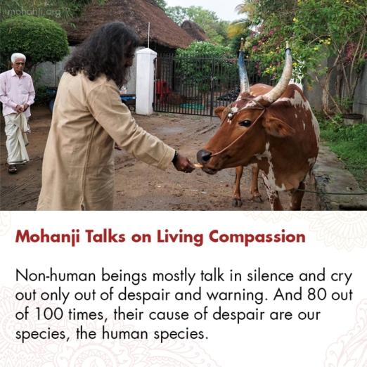 mohanji-quote-living-compassion