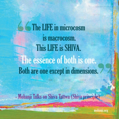 mohanji-quote-shiva-tattwa9-shiva-principle