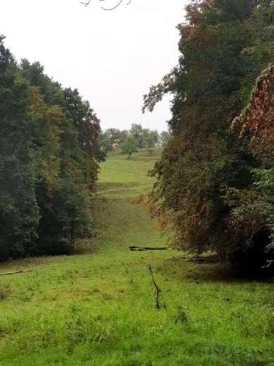 slovenia-ashram-land-3